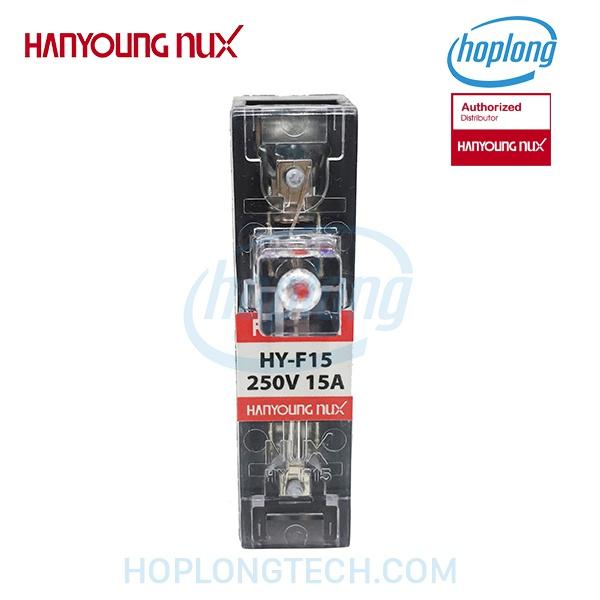 HY-F15-1A