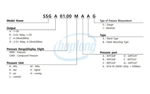 Sơ đồ đấu nối đồng hồ đo kỹ thuật số SSG Sensys